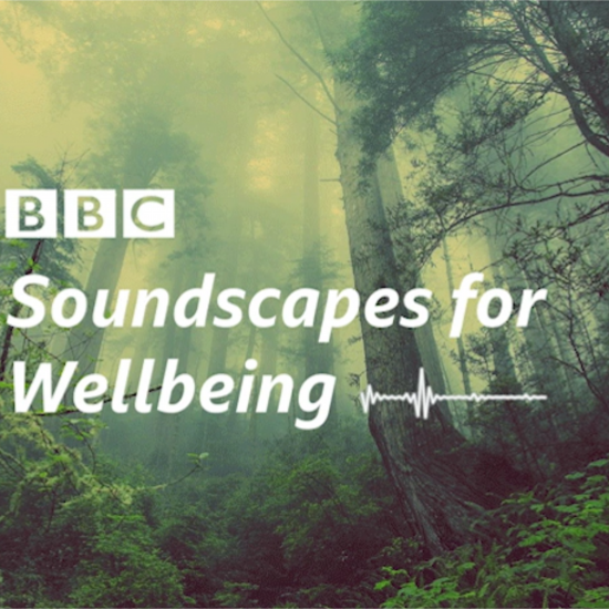 Mixing Music with Well-being