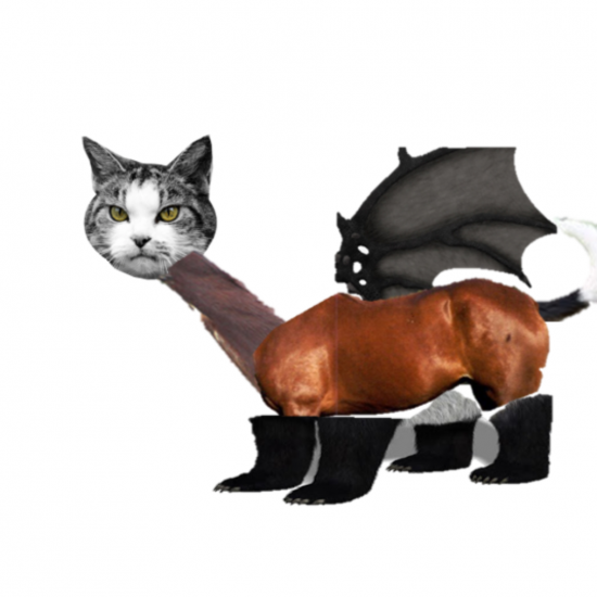 My Strange Pet