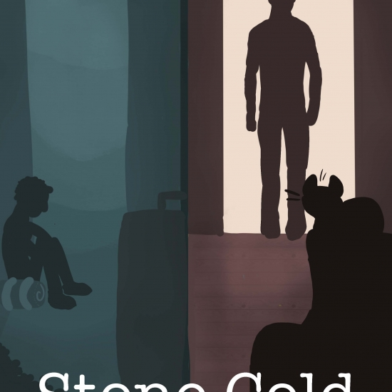 Stone Cold Book Covers