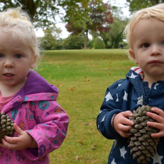 Little Acorns Seek Out Big Pine Cones